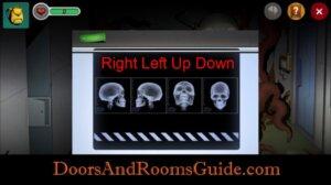 DR3 2-9 skull direction